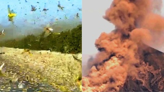 What's happening in this World: Huge locust clouds, volcano and snowfall in June