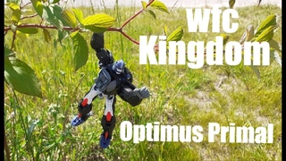 Transformers WFC KINGDOM Optimus Primal [ОБЗОР]