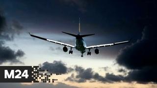 Самолет из Волгограда готовится к аварийной посадке в Шереметьево - Москва 24