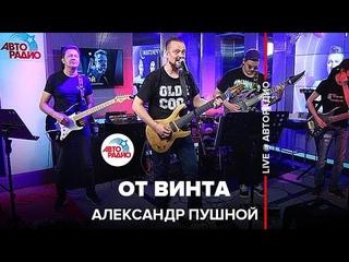 """Александр Пушной - От Винта (""""Смешарики"""" cover) LIVE @ Авторадио"""