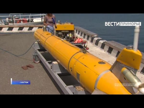 Подводные ищейки новые модели морских роботов представили во Владивостоке