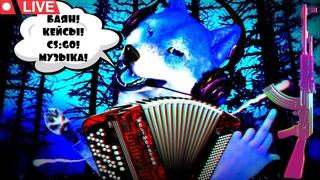 СТРИМ С ГРОМКИМ БАЯНОЧКОМ/ОРУЩИЙ БАЯН/СS GO/ ОТКРЫВАЕМ КЕЙСЫ/РОЗЫГРЫШ/МУЗЫКА/СПЕЦЭФФЕКТЫ