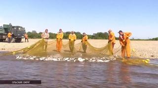 Путина-2020 на Колыме: Рыбаки ждут подхода лососевых на реках Яна, Армань и Тауй