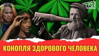 Почему на Руси выращивали коноплю, но не курили её?