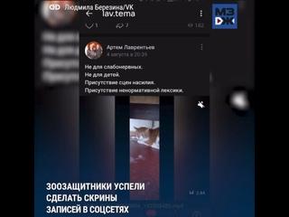 Video by Sabila Vane