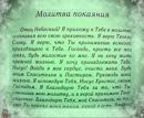 Фотоальбом Виктории Костырко