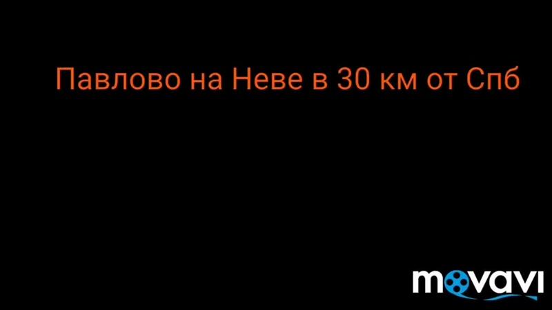 MovaviClips_Video_6.mp4