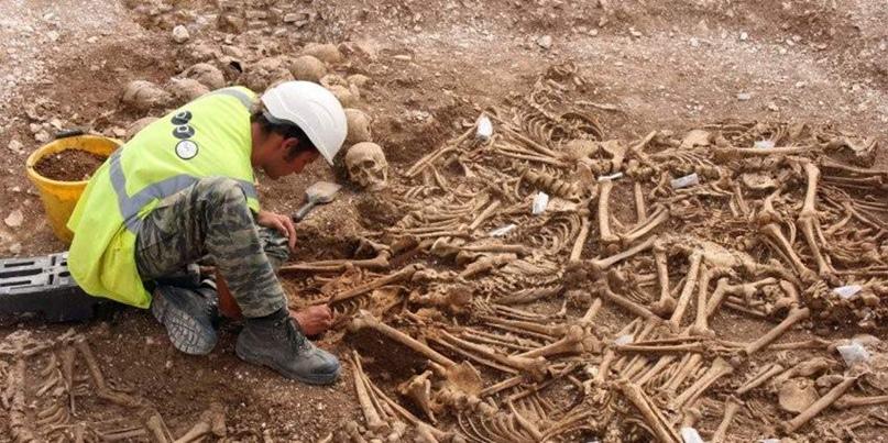 Говорящие кости: братские могилы эпохи викингов, изображение №4