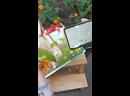 Видео от Библиотека 132 ЦБС ЮВАО