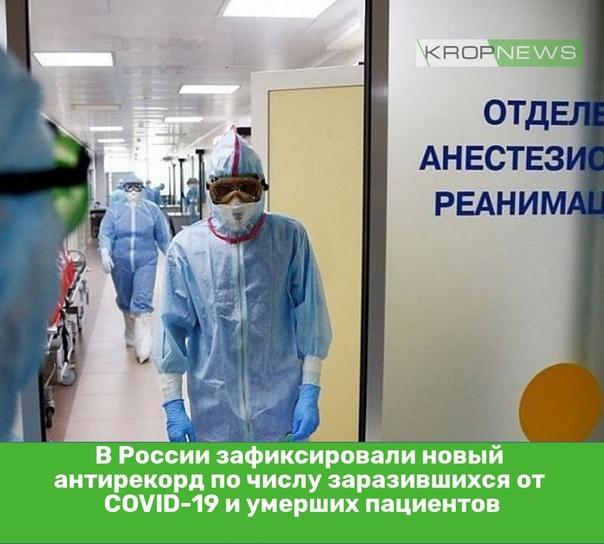 В России зафиксировали новый антирекорд по числу з...