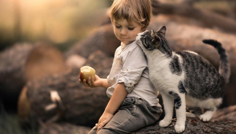 Наблюдаю такую картину на детской площадке: молодой папаша выгуливает сына, кото...