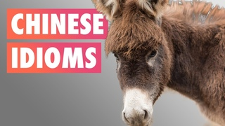 Over thirty Chinese sayings | Chinese idioms workshop by GoEast Mandarin