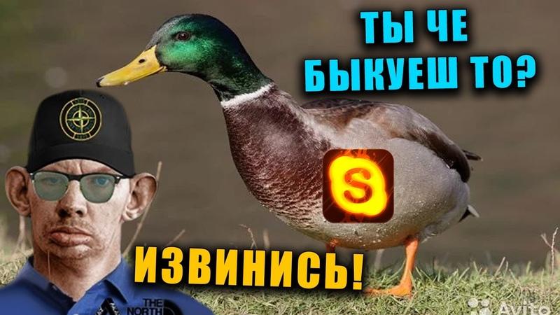 Лейтенант Жмышенко Конфликтует с Бестолочью