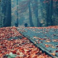 Фотография Натальи Илюхиной ВКонтакте
