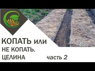Копать или не копать  Часть 2  Целина