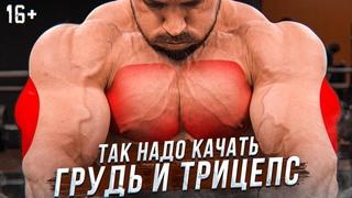 Супер упражнения на грудь и трицепс! Как накачать грудь. Тренировка трицепса